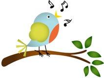Pássaro pequeno que canta em um ramo de árvore Fotos de Stock Royalty Free