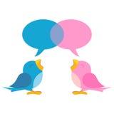 Pássaros azuis e cor-de-rosa Imagens de Stock Royalty Free