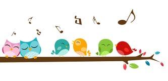 Pássaros que cantam no ramo Imagens de Stock