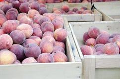 pêssegos Foto de Stock