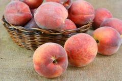 Pêssegos frescos Foto de Stock