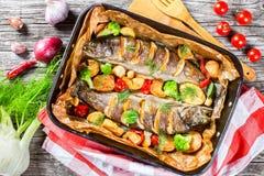 Pstrąg ryba piec z grulami, brokuły, cytryna, pomidory Fotografia Royalty Free
