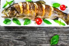 Pstrągowy fishe piec z cytryną, pomidory Fotografia Stock