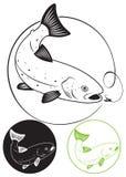 Pstrąg ryba ilustracji