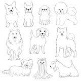 psy grupują małego ilustracji