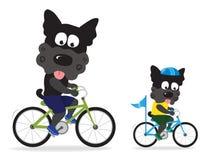 Psy jedzie rowery ilustracji