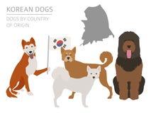 Psy krajem pochodzenia Koreańczyka psa trakeny Infographic templa royalty ilustracja