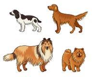 Psy różni trakeny w kolorze set4 - wektorowa ilustracja ilustracji