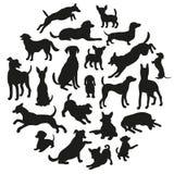 psy ustawiająca sylwetka Kolekcja wektorowa sylwetka w okręgu Fotografia Stock