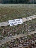 Psy utrzymywać na prowadzenie znaku fotografia stock