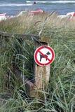 Psy zakazujący zdjęcie royalty free