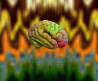 Psychedelic Brain Royalty Free Stock Photography