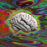 Psychedelic Brain. Surrounded by vivid hues Royalty Free Stock Image