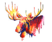 Psychedelic bright watercolor moose drawing Royalty Free Stock Photography