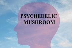 Psychedelic Mushroom concept Royalty Free Stock Photography