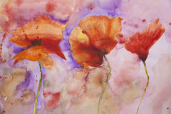 Psychedelic splashed poppies watercolour painting Royalty Free Stock Photos