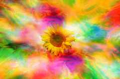 Psychedelic sunflower Stock Image