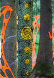 Psychedelische Muster und Dekorationen auf den Bäumen im Wald Stockbild