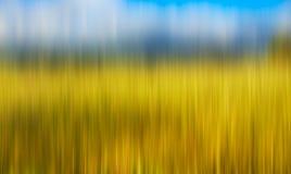 Psychedelischer Hintergrund basiert auf blured Landschaftsbild Stockfotografie