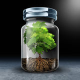 Psychological Limitations. Psychology concept as a tree shaped as a human head with growth constrained in a glass jar as a surreal metaphor for feeling Stock Images