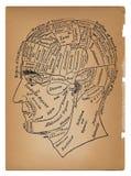 Psychologie ou illustration médicale de la tête mâle Photographie stock libre de droits