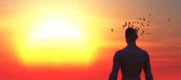 Psychology concept. Sunset and head of a man falling apart, psychology concept Stock Images