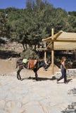 Psychro, il 29 agosto: Asino per il viaggio alla caverna di Zeus in montagne di Dikti dall'isola di Creta della Grecia immagine stock