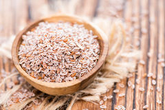 Psyllium Royalty Free Stock Images