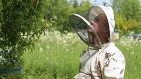 Pszczelarek spojrzenia przy oczkowaniem mrowie pszczoły Pszczelarka w Australijskim kostiumu zbiory wideo