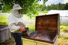 pszczelarka Zdjęcia Stock