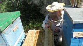 Pszczelarka bierze out honeycomb zbiory wideo