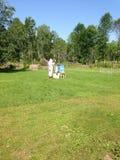 Pszczelarka i roje Zdjęcie Royalty Free