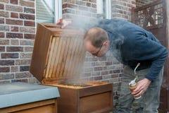 Pszczelarka sprawdza jego pszczoły kolonię używa dym Zdjęcia Royalty Free