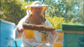 Pszczelarka trzyma honeycomb pszczoły pełno Pszczelarka Sprawdza Honeycomb ramę Przy pasieką stylu życia beekeeping pojęcie zbiory