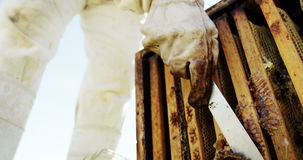 Pszczelarka usuwa beeswax od ula zdjęcie wideo