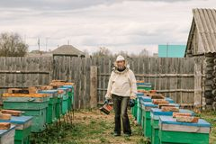 Pszczelarka w ochronnym kostiumu wśród rojów zdjęcie royalty free