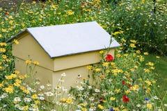 Pszczoła rój ustawiający w wildflower ogródzie obraz stock