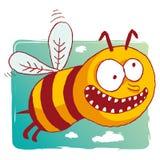 pszczoła śmieszna Fotografia Stock