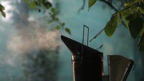 Pszczoła dym w pasiece zbiory