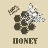 Pszczoła i miód Zdjęcia Stock