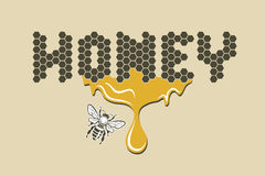 Pszczoła i miód Obrazy Stock