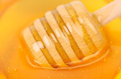 Pszczoła miód z drewnianą chochlą. obraz stock