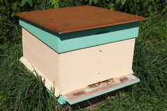Pszczoła rój. obrazy royalty free