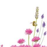 pszczoła ruchliwie royalty ilustracja