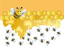 pszczoła wesoło Fotografia Royalty Free