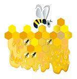 pszczoła wesoło Obrazy Stock