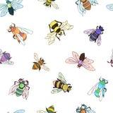 Pszczoła wzór Kolorowa ręka rysujący insekta tło Ilustracja Wektor