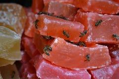 Pszczoły chcą niektóre cukierki Zdjęcia Royalty Free