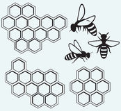 Pszczoły na miodowych komórkach ilustracji