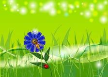 Pszczoła na kwiacie ilustracji